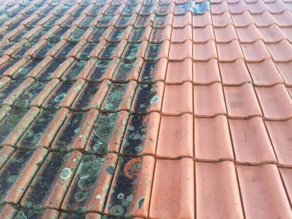 Roseville Roof Cleaning